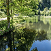 """Der Nonnenmattweiher ist einer der wenigen Karseen im südlichen Teil des Schwarzwalds. Seinen etwas seltsam klingenden Namen hat das Gewässer von den altbadischen Bezeichnungen """"Nonnen"""" für Kälber und """"Matten"""" für Wiesen oder Weiden."""