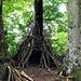 schon wieder seltsame Architektur im Wald