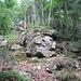 Immerhin waren seitlich neben dem Weg einige kleinere Felsformationen zu sehen.