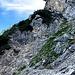 Leichte Kletterstelle (1-) um in den nächsten Latschengürtel (links) zu gelangen