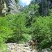la parte finale della valle dei mulini attraversa più volte il torrente ed è incassata nelle falesie sia a destra che a sinistra.