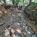 Sulla pista forestale scavata dalle forti piogge