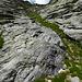 Die unverkennbare schmale Grasrinne die von Italien zum Passo dei Contrabbandieri führt...