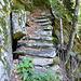 Kunstvolle Steintreppe über der Schlucht im Bosch de Rovel