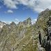 Abstieg über die Pizzo Campanile SW-Flanke: von rechts P. 2434.0, der (von hier nicht mehr so) spitze Gendarm, Testa del Martèl und Pizzo Caurga, dahinter Piz Martèl und Pizzo Paglia