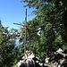 Das Gipfelkreuz des Röthelstein befindet sich zwischen den Bäumen