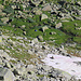 Bald erreichte ich nach zwei Stunden Abstieg vom Gipfel wieder mein Zelt auf der Ebene vom Obere Stafel (2150m).