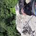 """Tiefblick zu den Baumkronen, der """"kleine"""" Felsen kommt ganz gross raus."""