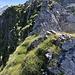 Kurzes Gratstück zum Gipfel mit Steinmanndli