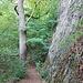 """Auf dem """"Hohentwieler"""", einem schönen Bergpfad zur Karlsbastion. Die meisten Wanderer kommen über den """"Normalweg"""" von der Domäne her"""