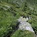 Fast nicht mehr sichtbarer Weg im oberen Chietal