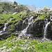 grünes Paradies bei der Chamanna da Boval SAC
