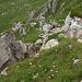 Tiefblick aufs Chichli am steilsten Grasstück (ca. 60-65 Grad)