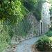 Begrünte Mauern im historischen, alten Teil