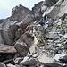 Hier die Aufstiegsrinne vom Gletscher zur Gratscharte, welche nicht sonderlich schwer (SG II), sondern nur schuttbeladen ist.