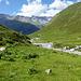 Es is nicht mehr weit zum Alp Plazbi.