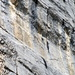 Detail aus den Felsen
