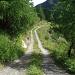 Dans la montée à L'alp Sampuoir