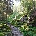 Aufstieg vom Hüttecksattel zum Rossfeld