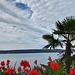 Mediterranes Flair und noch angenehme, milde Temperaturen vor dem nachmittäglichen Wetterumschwung
