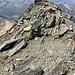 Gipfelgrat Punta Terrarosso / Wasenhorn