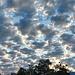 Nach einem  fantastischen Sonnenaufgang über dem Bodensee diese Wolkenstruktur über dem Rheintal.