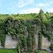 Die typischen Molassefelsen am Überlinger See mit Mauerbehang