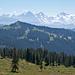 Blick über den Bolberg hinüber zu den Berner Alpen