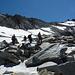 Abstieg über freundliche Firnfelder zur Almagellerhütte