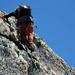 Chickenheads, Sanduhren - extrem strukturreicher Gneis auf der gesamten Route