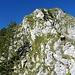 Schlussaufstieg zur Spitzflue. Die Leiter kann auch über den Grat rechterhand in leichter Kletterei umgangen werden.