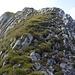 Am Gipfelgrat begrüßt mich wieder Gras. Wie schön....