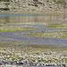 Detail von Wasserzulauf von See zwischen Muot Arduond und Muot dals Lejs.