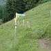 Abzweigung nach der Alp Säls Richtung Gocht (blau-weiss)