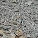 Steinbrocken in allen Grössen (ein Wanderer für die Grössenverhältnisse)