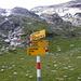 Nach der Lampertschalp (1991 m): Abzweigung zum steilen Pfad auf den Passo di Soreda (2759 m). Über diesen Pass wurde das Hochtal ursprünglich von Bleniesi bestossen.