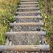 ...mit einer ziemlich neuen Treppe. Danke schön!