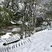 der nächste Wegabschnitt führt auf Holzstegen über sumpfige Stellen und Wiesen