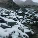 Beim Aufstieg zur Punta Adami