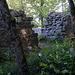 der heutige Eingang zur Burgruinenanlage Ödenburg im Burggrabenan er Ostseite. Früher befand sich der EIngang an der Nordseite über einer Felswand und war über einen Holzsteg zugänglich.<br /><br />Es macht den Anschein, als ob hier ein mächtiges Geschlecht im 11. Jahrhundert begonnen hat, eine Herrschaft aufzubauen und diese mit nicht weniger als drei grossen Burgen auszustatten. Dass alle drei Anlagen zur selben Herrschaft gehört haben dürften, belegt die Streuung der Güter, die als zur Ödenburg gehörig bezeichnet werden: Sie befinden sich alle in der näheren Umgebung der Burgen Alt Homberg und Alt Tierstein. <br /><br />Die Quellenlage für diese alte Ruine ist sehr dürftig, es ist nicht einmal der ursprüngliche Name bekannt. Die Burg wurde um 1150 schon aufgegeben, also zu einem Zeitpunkt, als schriftliche Dokumente noch sehr selten erstellt wurden. Archäologen und Historiker vermuten den ursprünglichen Name Heltburg (von Held). Als die Ruine vom Wald überwachsen wurde und der Originalname in Vergessenheit geriet, wurde die Burgstelle im Volksmund als öde Burg bezeichnet, was zum heutigen Namen führte. Aufgrund der Bodenfunde kann eine Nutzung der Anlage zwischen Ende des 10. Jahrhunderts und Ende des 12. Jahrhunderts angenommen werden. Forscher stellten bei seiner Ausgrabung in einem Teil der Anlage nicht datierte Brandspuren einer Feuersbrunst fest. Die Ruine ist 1320 im Besitz des Hauses Habsburg-Laufenburg. Vermutlich wurde die Burg aber von den Grafen von Homberg gegründet, deren Lehen mit dem Aussterben der Homberger 1223 an Habsburg-Laufenburg zurückfiel. Aufgrund der Situation (unvollständige Ringmauer, freier Platz im Burghof, Steinbruch im im Burggrabem) wird angenommen, dass die Burg inmitten einer Ausbauphase aufgegeben wurde, wegen finanzieller Probleme oder Verschiebungen der Politik und Machtbereiche der Adelsgeschlechter.