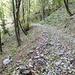 questo a sinistra, in leggera discesa, il bivio per prendere il sentiero prima del tornante sulla ex strada militare