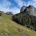 Auf der Alp Nüschlete