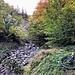 Prolog: durch den wüsten Stinkergraben (S3/S4) ins Söllbachtal