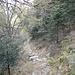 Sentiero verso l'Alpe di Devrè