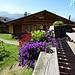 Blumenschmuck auf der Terrasse des Alpenrösli in Medergen