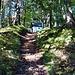 Aufstieg von Bruck zur Hornkapelle