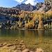 lago panaz