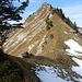 Der Bewuchs am Grat wird weniger, dafür ab und an etwas Schnee in der Nordflanke
