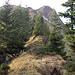 Rückblick am Türtschorn-Ostgrat zu dessen Gipfel