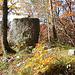 Die Felskanzel P.750,4m auf dem Räschberg. Zu meinem erstaunen waren sogar Eisenstangen einzementiert um den Fels einfach besteigen zu können.